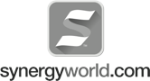 Synergy World
